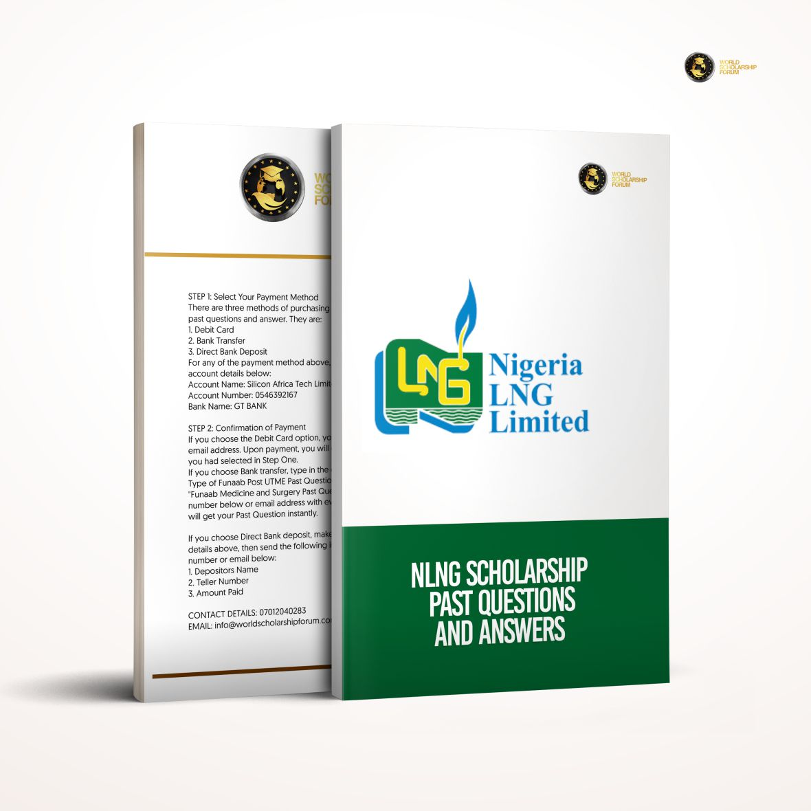 NLNG Undergraduate Scholarship Past Questions and Answers