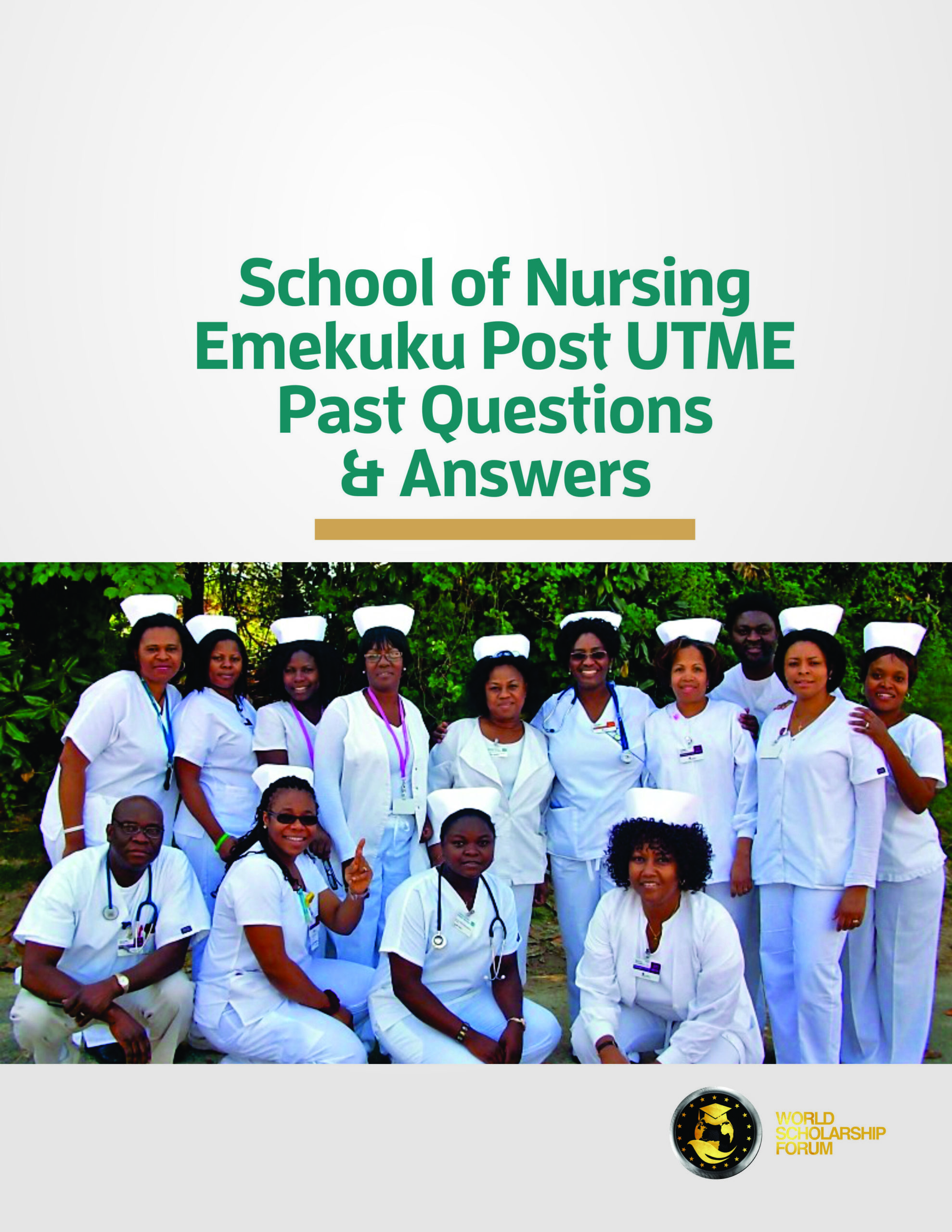 emekuku-school-of-nursing-past-questions